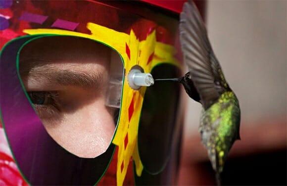 """Máscara alimentadora de beija-flor """"olho no olho"""". (com vídeo)"""
