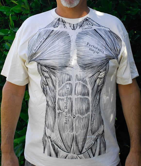 Mostre seus músculos com a moda Edu-Wear.