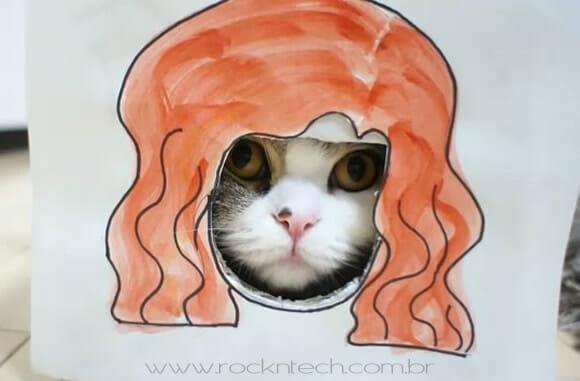 VIDEOFUN - Mude o visual do seu gato de um jeito muito simples.