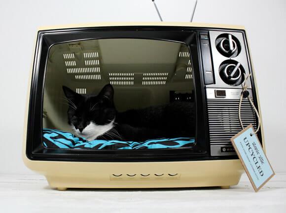 Uma TV retrô transformada em cama para gatos.