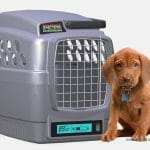 Carregue seu melhor amigo em uma caixa de transportes com sistema de ar condicionado!