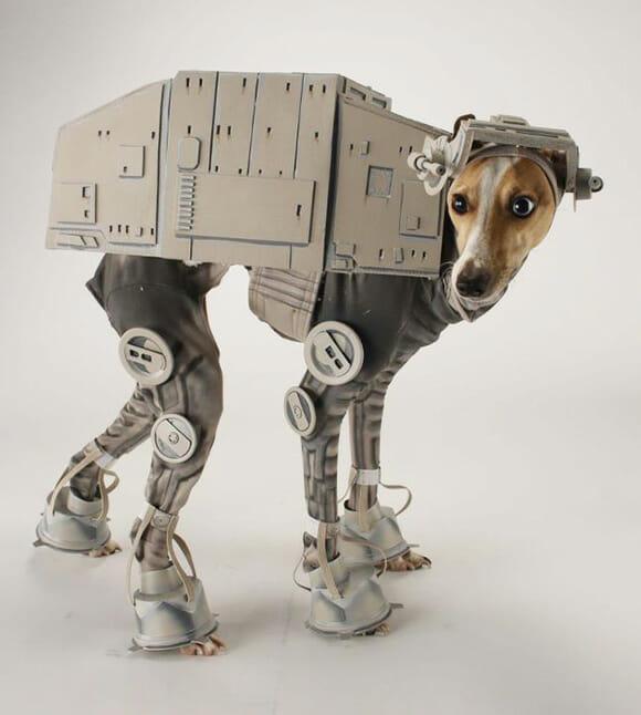 Um cachorro de uma galáxia muito, muito distante.