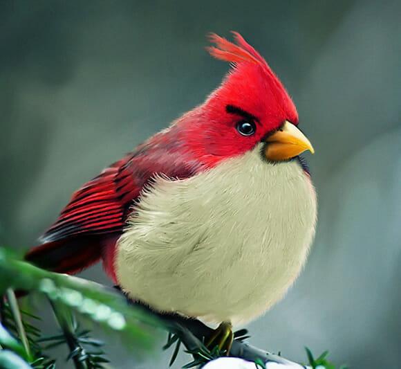 E se os personagens do Angry Birds fossem reais?