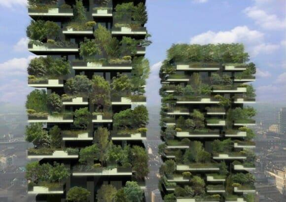 Projeto floresta vertical