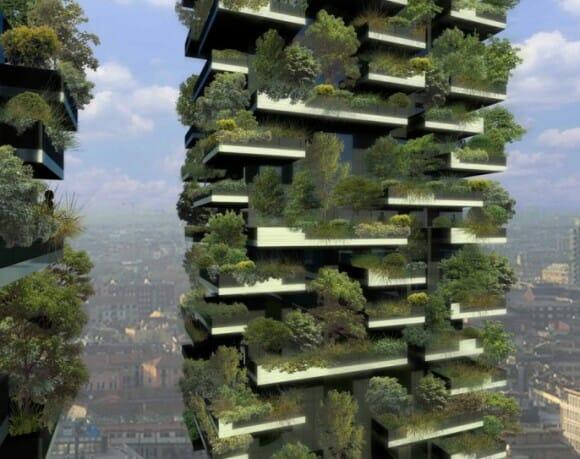 Projeto floresta vertical 3