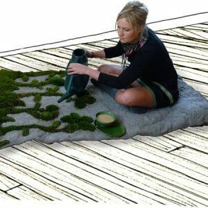 Cultive um tapete e tenha um jardim dentro de casa. Hã?!