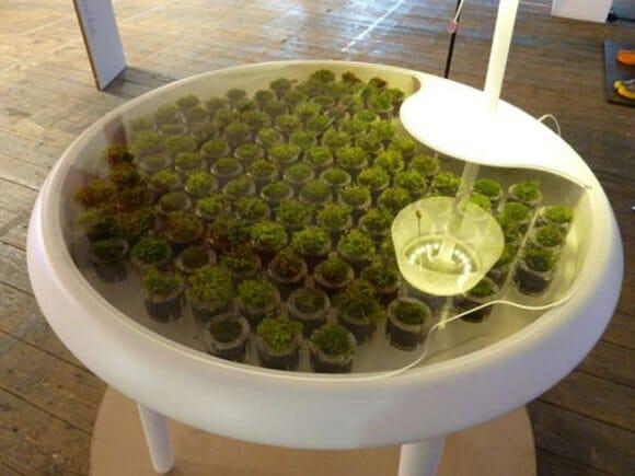 Empresa cria mesa com plantas capaz de recarregar a bateria de aparelhos eletrônicos.