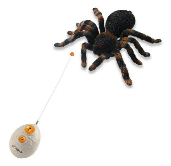 Uma nova maneira de assustar meninas: Aranha movida por controle remoto!