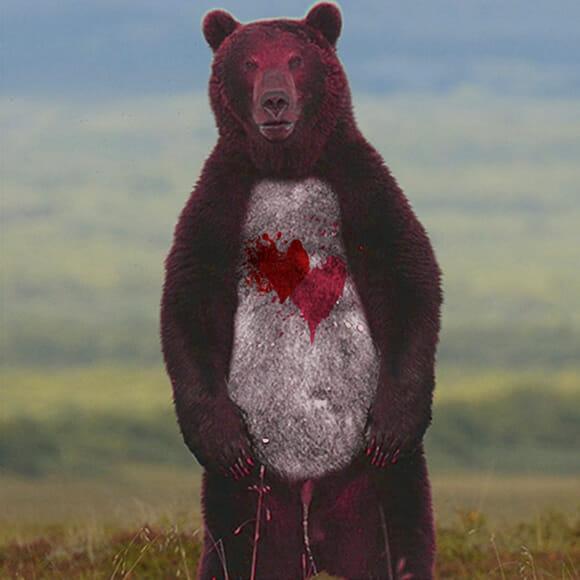 Ursinhos Carinhosos na vida real.