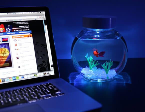 """É um fracasso com animais? Adote um """"peixe eletrônico"""" de estimação!"""