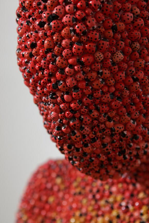 Coberta de joaninhas da cabeça aos pés