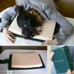 Travesseiro em forma de livro. Indicado para os que sempre dormem enquanto estudam