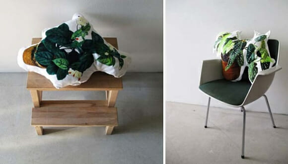 Sem tempo para cuidar das plantas de sua casa? Compre almofadas em forma de plantas!