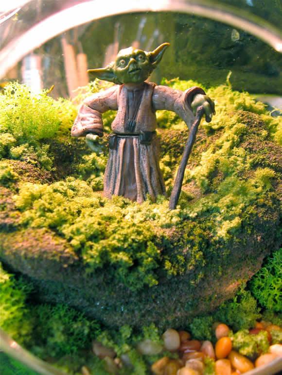Aquário é coisa do passado! Eu quero um Terrário com o Mestre Yoda dentro!