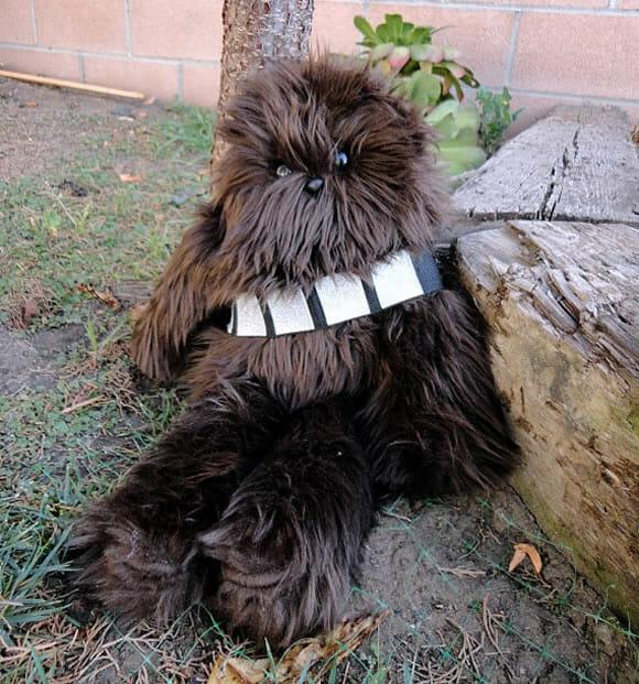 """Chewbacca e """"Sra. Chewbacca"""" de pelúcia para fãs de Star Wars"""