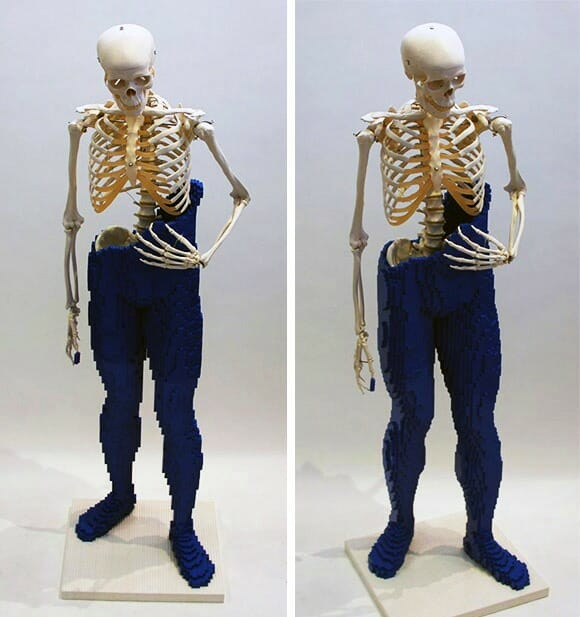 Artista constrói escultura usando blocos de LEGO e réplicas de ossos humanos