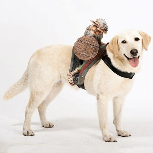 Coleiras engraçadas vêm com cavaleiros para fazer companhia para o seu melhor amigo