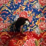 Artista se pinta para ficar camuflada em suas obras de arte