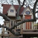 Casa na árvore é coisa do passado! Casal de Avós constroem 'Mansão na árvore' para seus netos