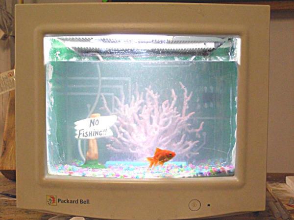 9 coisas legais para fazer com aquele seu monitor quebrado for Aquarium plat
