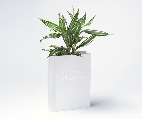 Vaso de plantas em forma de livro para ficar camuflado entre os livros da estante