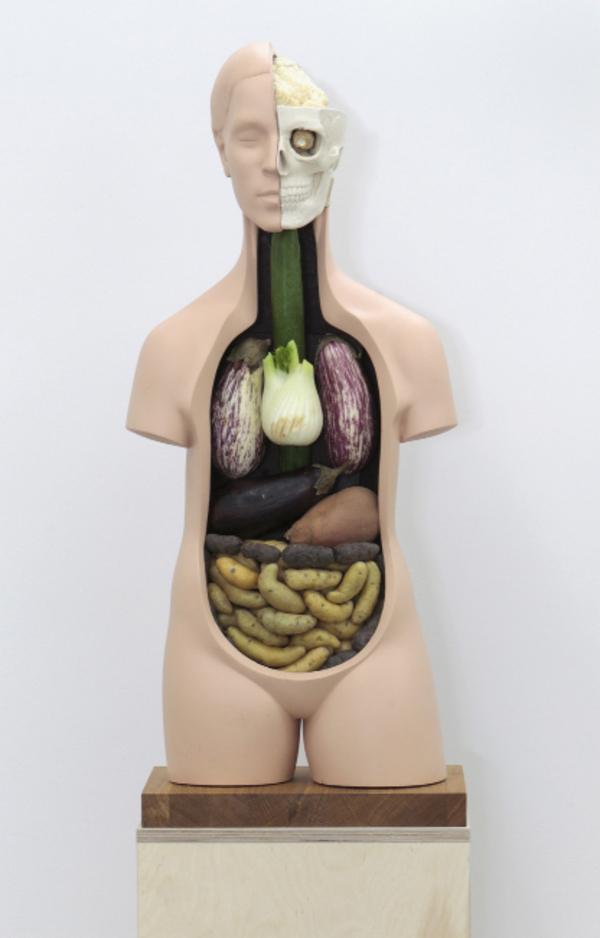 Veggieanatomy - Escultura representa a anatomia humana com órgãos feitos de vegetais
