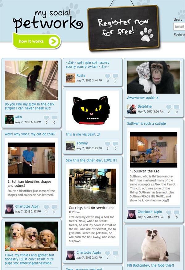 My Social Petwork - A rede social do seu bicho de estimação