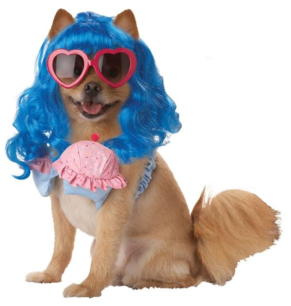 Top 7 fantasias engraçadas para cachorros