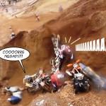 armadilha-motocross