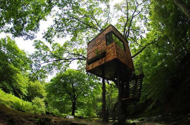 Casas na Árvore Fantásticas 10