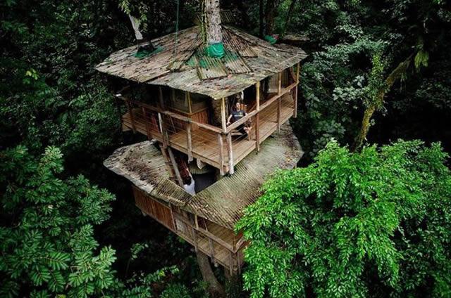 Casas na Árvore Fantásticas 14