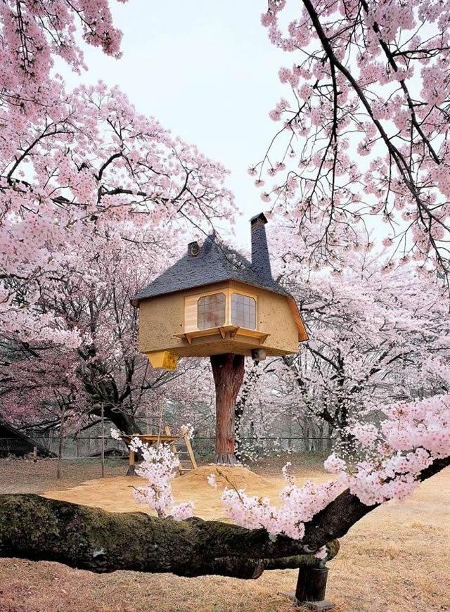 Casas na Árvore Fantásticas 16