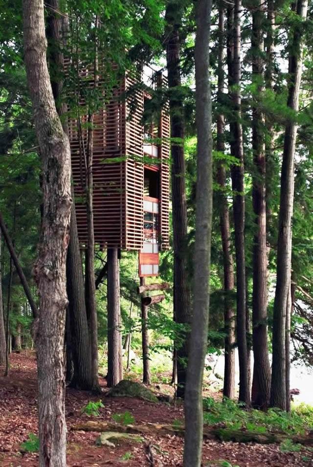 Casas na Árvore Fantásticas 5