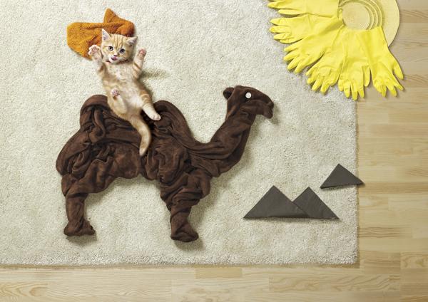 Projeto apresenta fotos de filhotes em cenários criativos criados com objetos comuns e utensílios domésticos