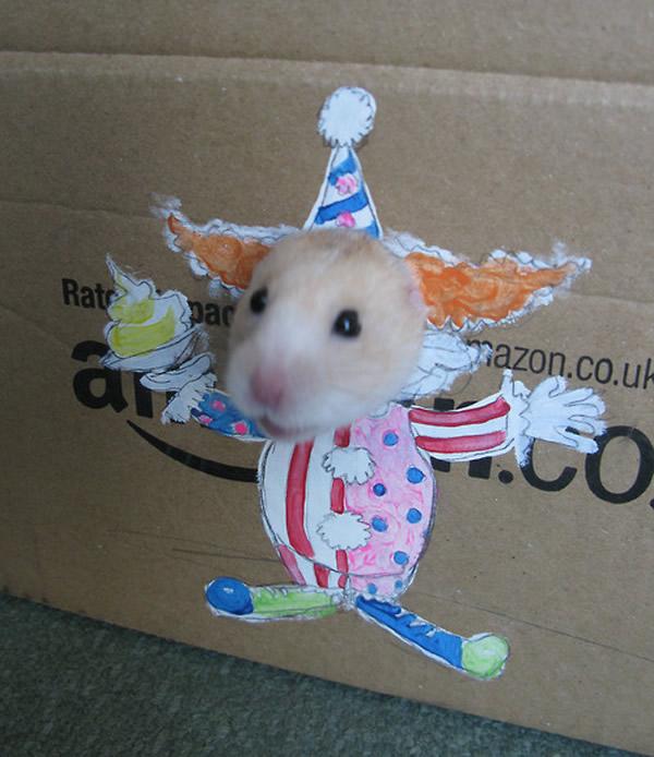 Com vocês o palhaço, a princesa e a sereia Hamster da caixa de papelão!