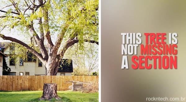 Não é o que parece: 16 imagens que você precisa olhar muito bem para entender