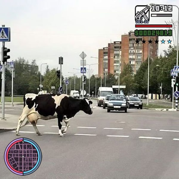 grand-theft-auto-vida-real_13