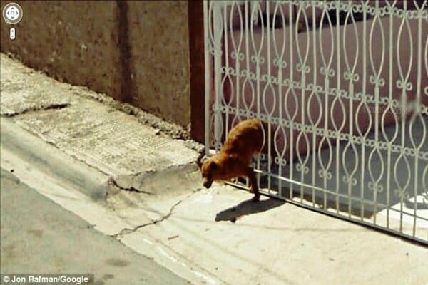 imagens-bizarras-malucas-google-street-view_12