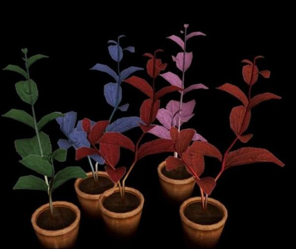 fatos-curiosidades-resident-evil_5_pink-herb