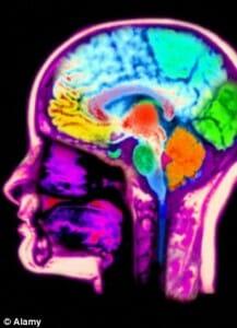 Videogames podem aumentar nosso cérebro, diz estudo