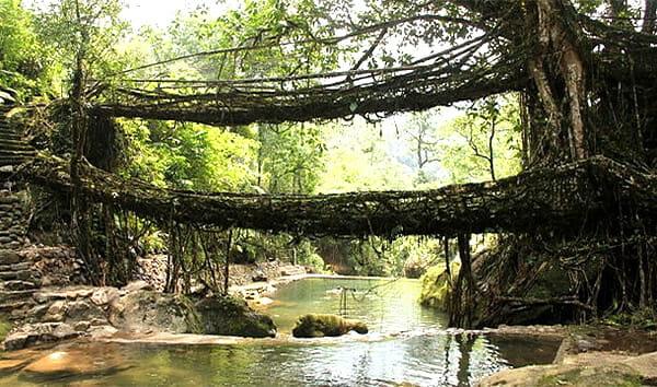 pontes-e-pinguelas-inacreditaveis_5