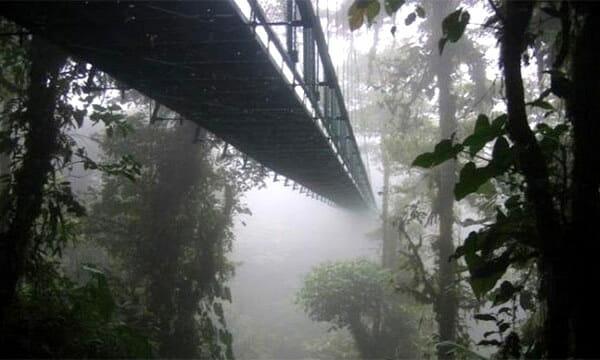 pontes-e-pinguelas-inacreditaveis_7
