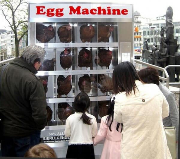 vending-machines-curiosas_chicken-machine