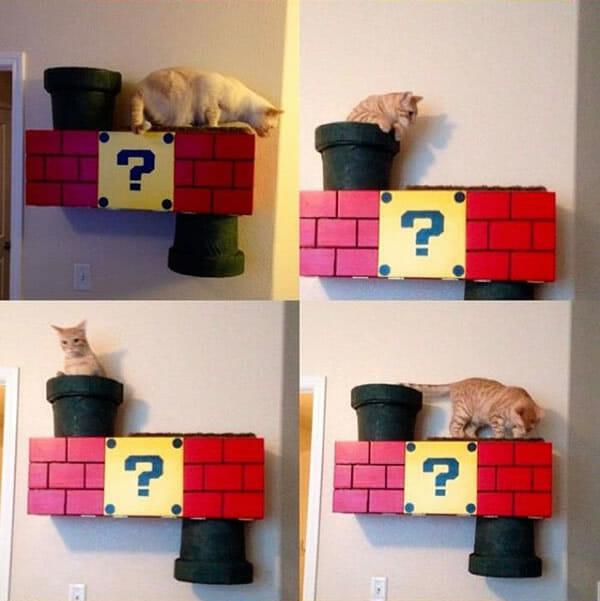 Com vocês, a casa de gato mais legal de todos os tempos! Super Mario curtiu isso!