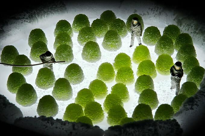 """20 Fotos sensacionais de miniaturas de humanos interagindo com um """"mundo de comida"""""""