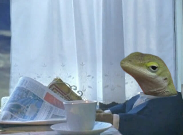 O lagarto mal-humorado é o mais novo meme que você precisa conhecer (10 Fotos)