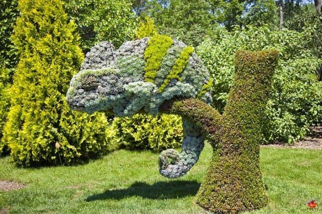 jardins-ornamentais-fantasticos_15