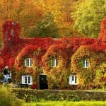 comparacoes-paisagens-outono_1b