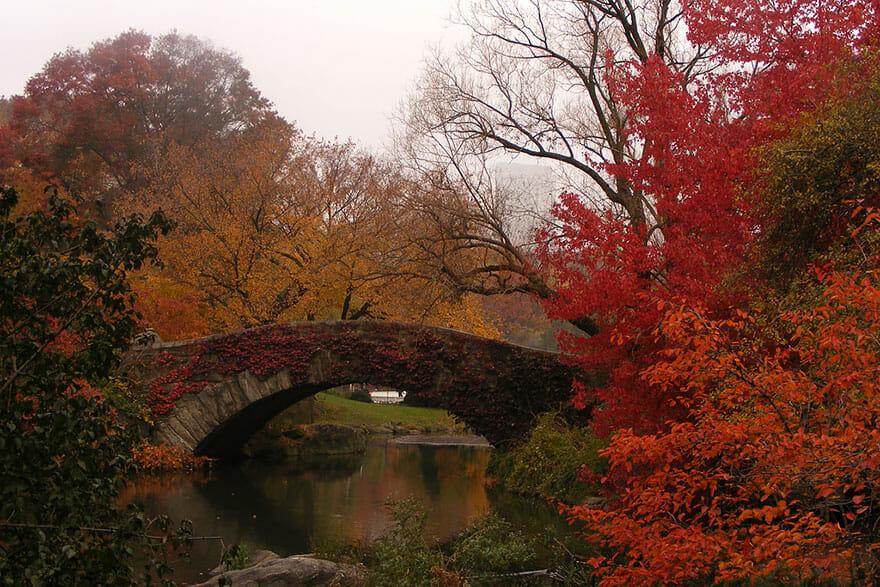 comparacoes-paisagens-outono_2b