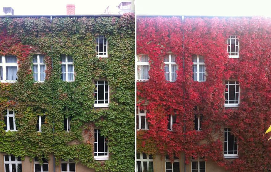 comparacoes-paisagens-outono_4